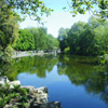 kaydeefalls: pretty pretty st stephen's green (going to my happy place)