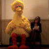 kaydeefalls: Big Bird and CJ Cregg share a bench (just another day at the office)