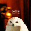 aj: (headwig)