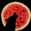 roguemariel: (Watermelon Wolf)
