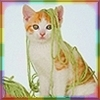 rainbow: An orange and white kitten draped in green yarn (what yarn?)