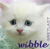 "ladyjane: Tiny white kitten looking worried. ""wibble."" (*wibble*)"