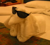 owlmoose: (towel dog)