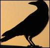 a_crowded_mind: crow silhouette (book kitty)