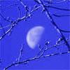 magycmyste: (moon)