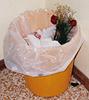 jenny_evergreen: (Trashed Roses)