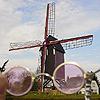 jenny_evergreen: (Windmills)