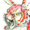 attie: An angry pink and white striped rabbit. (misc - angry rabbit is angry)