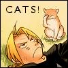 fullmetalrose: (Ed cats)