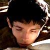 yourlibrarian: Merlin sleeps (MERL-SleepingMerlin-adsullatta)