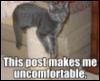 squirrelodoom: (uncomfy)