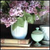 just_ann_now: (Reading: Lilacs and Books)