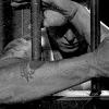 nextinline: (prison bound)