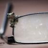 kuzimama: (лягушка и очки)