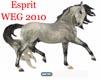 blueeowyn: (World Equestrian Games)
