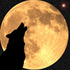 imnotamonster: (howling at the moon)