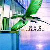 alyse: (primeval - rex)