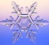 alyse: (snowflake)
