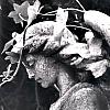 dancing_serpent: (Photos - Highgate - Grey Angel)