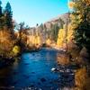 elrhiarhodan: (Scenic - Okanagan Forest Stream)