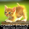 rhienelleth: (kitty combat)