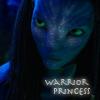 rhienelleth: (neytiri warrior princess)