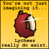 pteromys: You're not just imagining it; lychees really do exist. (lychee)