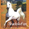 angelak: (ShadowFax)