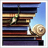 cygny: Books snail (Books snail)