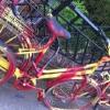 green_knight: (Bike)