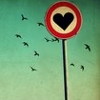 revolutions: Road sign showing a black heart, against a blue/greenish sky with birds in flight. (heart sign)