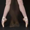 elshadye: Echappe Pointe Shoes (Default)