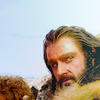 holdsthekey: (Thorin suspects something || What have w)