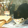 lavendertook: (tea with cat and books)