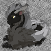cheyinka: A blurry image of a furry, black and grey dragon with glowing golden eyes. (dagron)