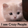 yeloson: (I see crazy people)