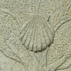 sashajwolf: Stone carving of scallop shell on background of a tree (shell on tree)