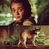 curiouscrow: (Arya Stark)