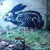 danilicious: (its a fucking rabbit)