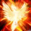 yutaku: (phoenix)