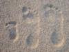 mandarinenbaum: (наши следы на песке)