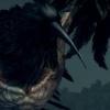 ornifex: (CAW CAW)