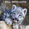 cynthia1960: (Death by cute)