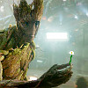 next_to_normal: Groot holding out a flower (Groot)