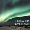 "sofiaviolet: ""I shall not live in vain."" -Emily Dickinson (Emily Dickinson)"