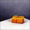 sofiaviolet: a parcel wrapped in brown paper (package)