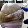 wordshavepower: (bucket)