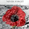 gwendraith: (poppy never forget)
