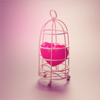 ellia: pink loveheart in a gilded cage (caged heart)