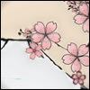 nmsakura: (Sakura, Mount Fuji)